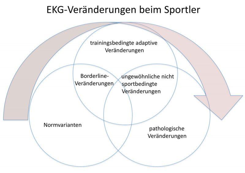 EKG Veränderungen beim Sportler